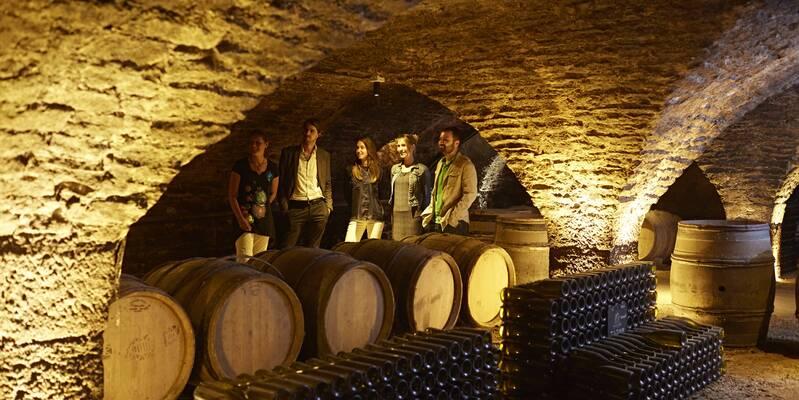 Caves Patriarche Père & Fils, Beaune © Studio Piffaut