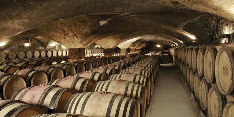 Weinkeller im Château de Meursault