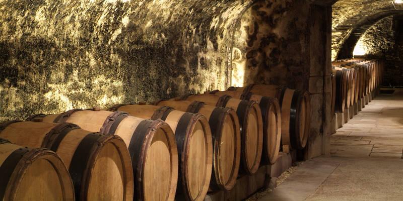 Die Kellergewölbe aus dem 15. Jh.