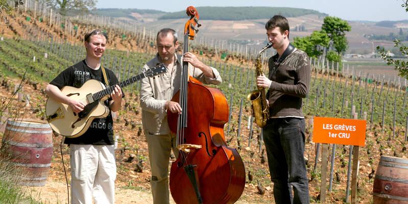 Musikalisches Rahmenprogramm © Beaune Saveurs des Vignes