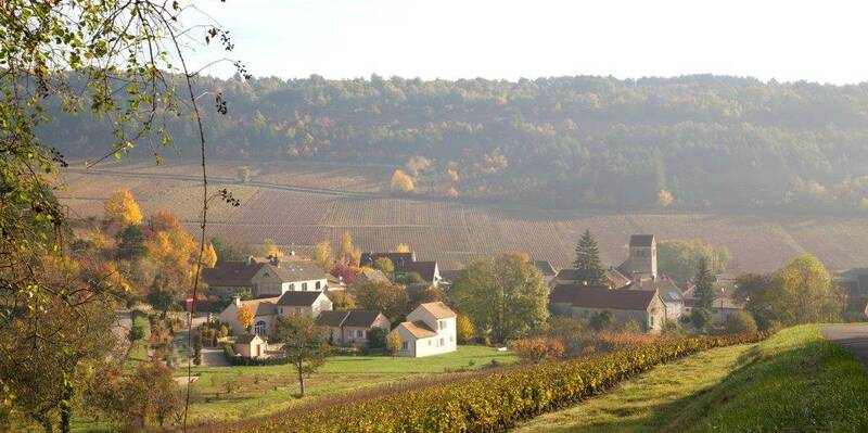 Dans Winzerdorf Nantoux Beaune Tourisme © atelier Muzard