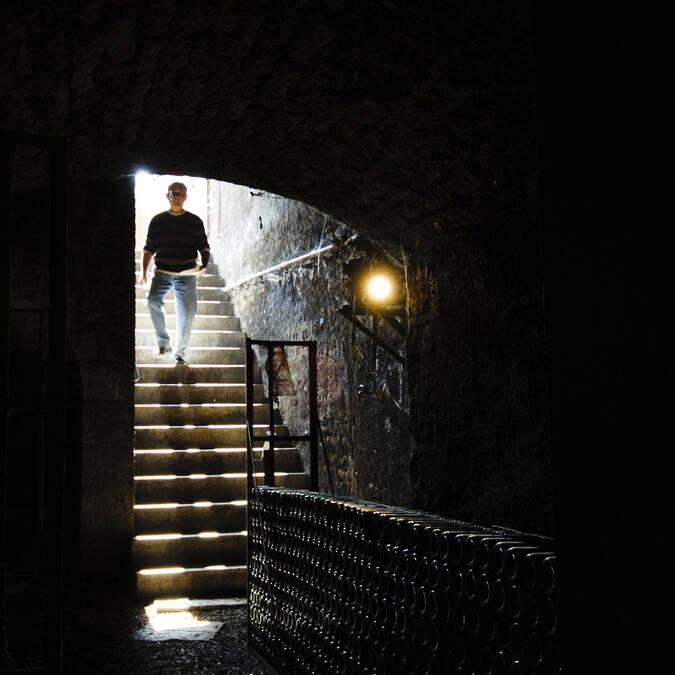 Auf dem Weg ins Kellergewölbe