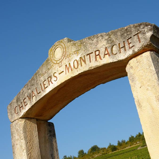 Die Lage Chevaliers-Montrachet